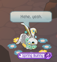 The animal jam whip how to do the spring bunny glitch 1 change into your spring bunny ccuart Choice Image