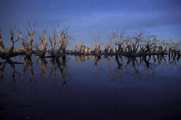 Trees are reflected in water in Epecuen. Many residents of Epecuen fled to nearby Carhue, another lakeside town, and set up new hotels and spas, promising relaxing getaways featuring saltwater and mud facials.