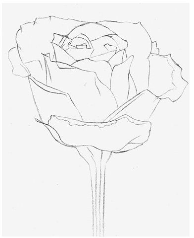 Drawing lessons and tutorials drawing lesson how to draw a rose once you make a complete outline of roses you can start shading i will start shading the center too there are two ways to shade ccuart Images