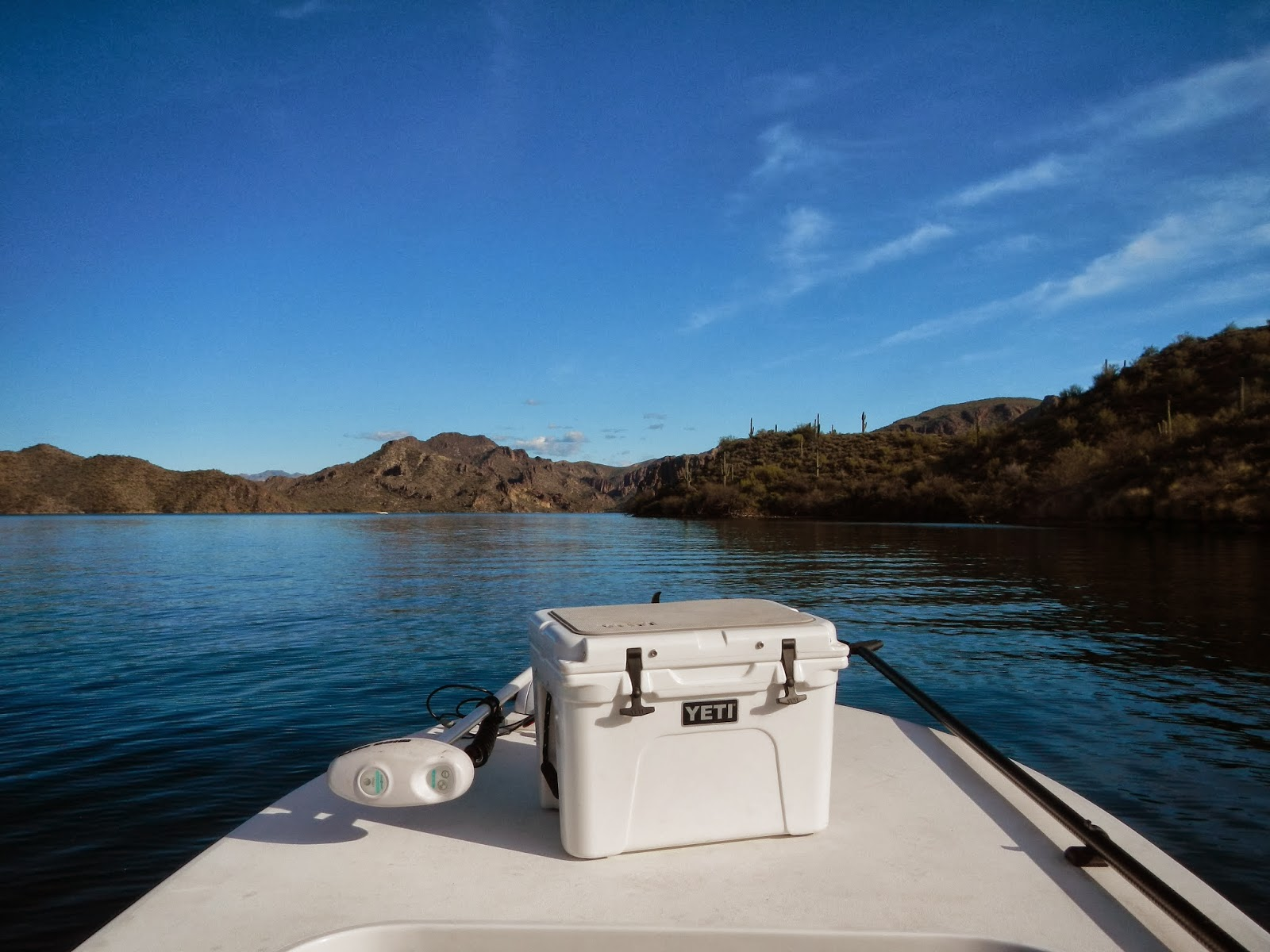 Saguaro lake arizona bass for Saguaro lake az fishing