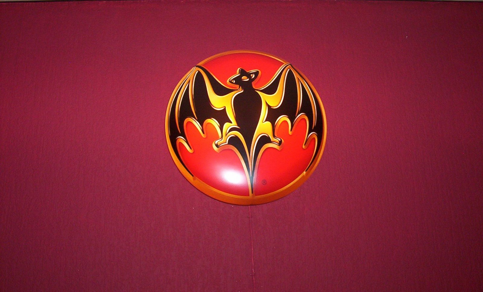 everything about all logos  bacardi logo pictures