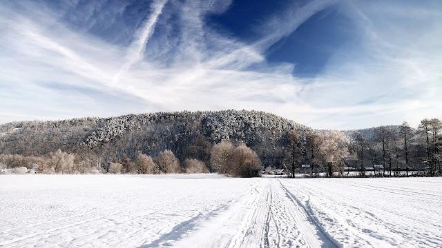 Об агрометеорологических условиях на территории России в 1-й и 2-й декадах декабря 2014 года