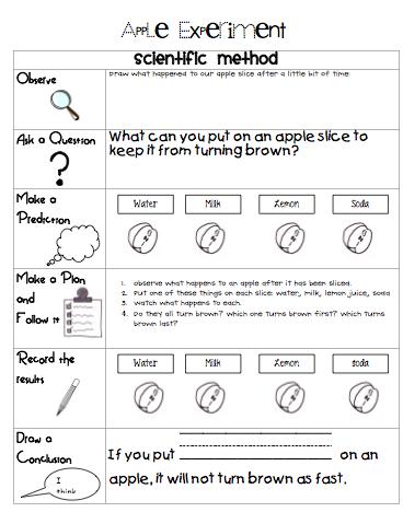 grade 6 essay titles