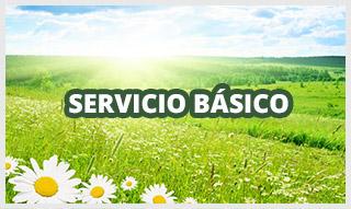 http://www.funerariamartinezperu.com/2014/12/servicio-funerario-basico.html