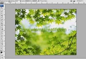 Membuat Frame Sendiri Dengan Photoshop