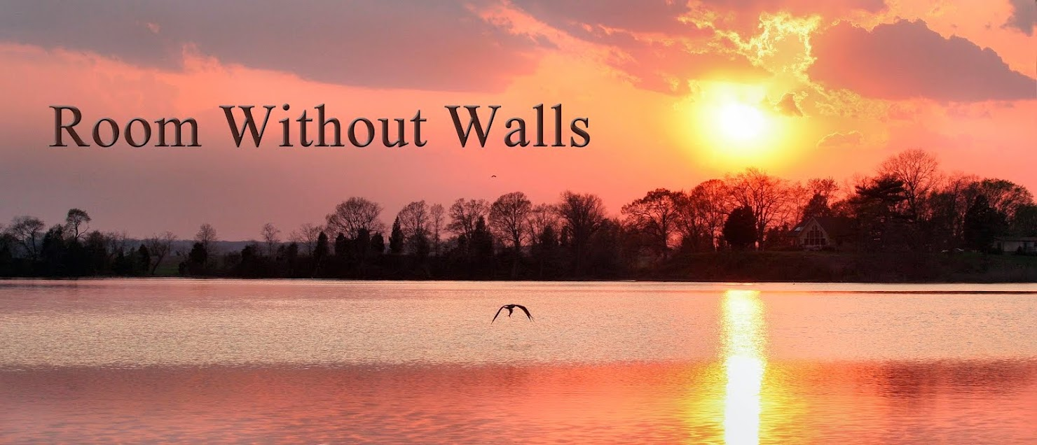Room Without Walls