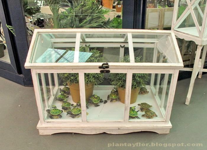 Plantas y flores urnas invernadero for Plantas para invernadero