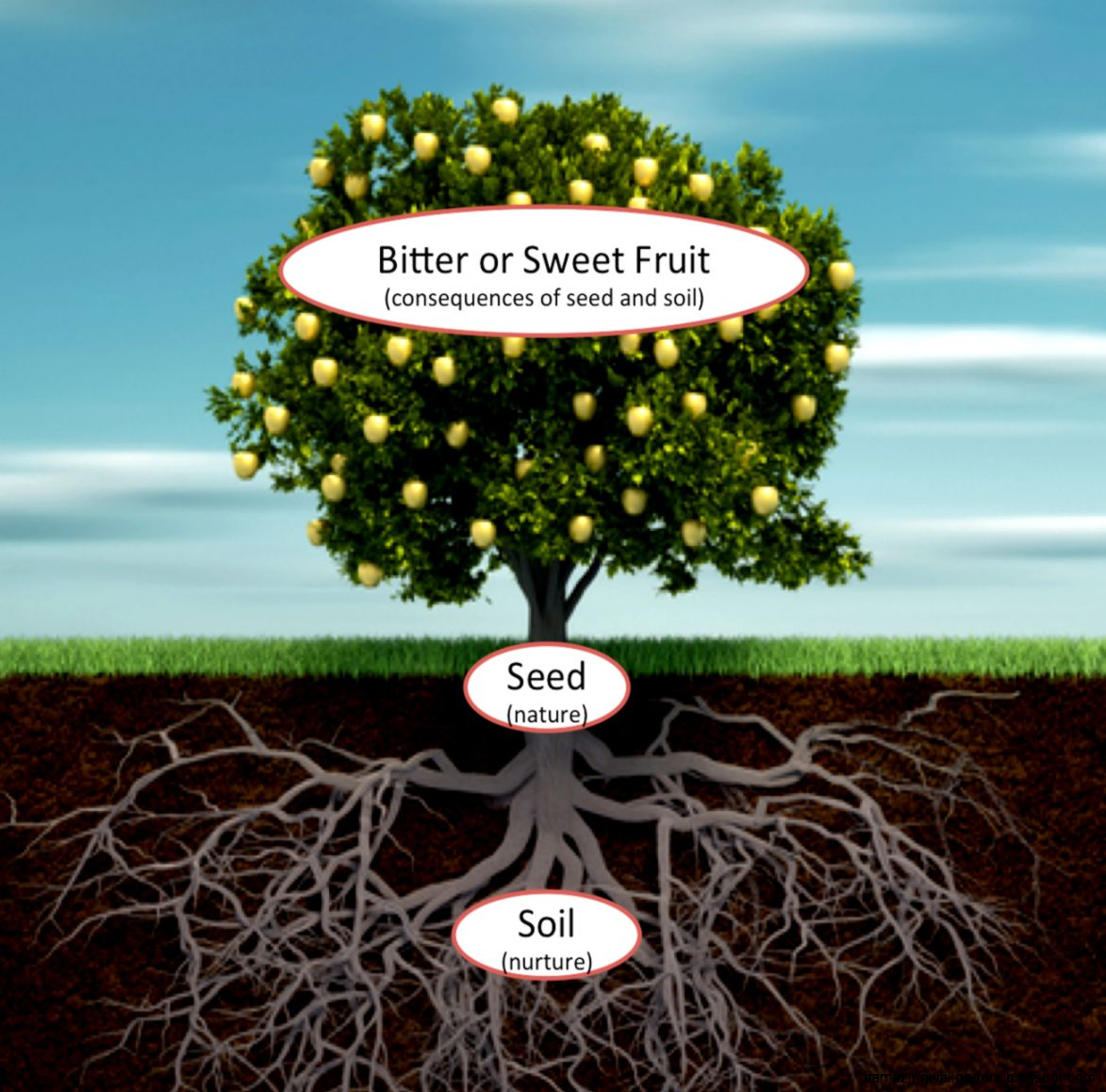 Micro Aggressions in the Workplace Roots and Fruits  Lighthouse
