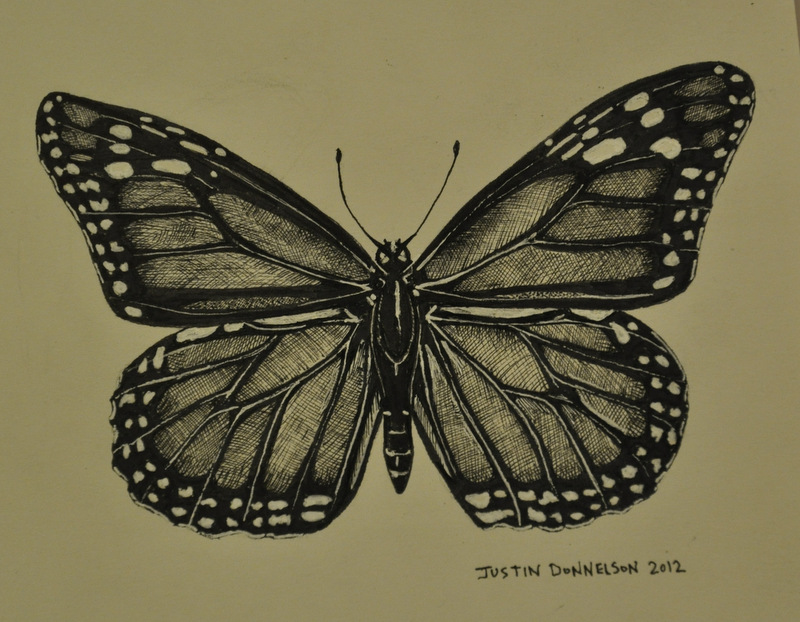 People Who Create Art Pen And Ink Drawing Of A Butterfly Justin Donnelson