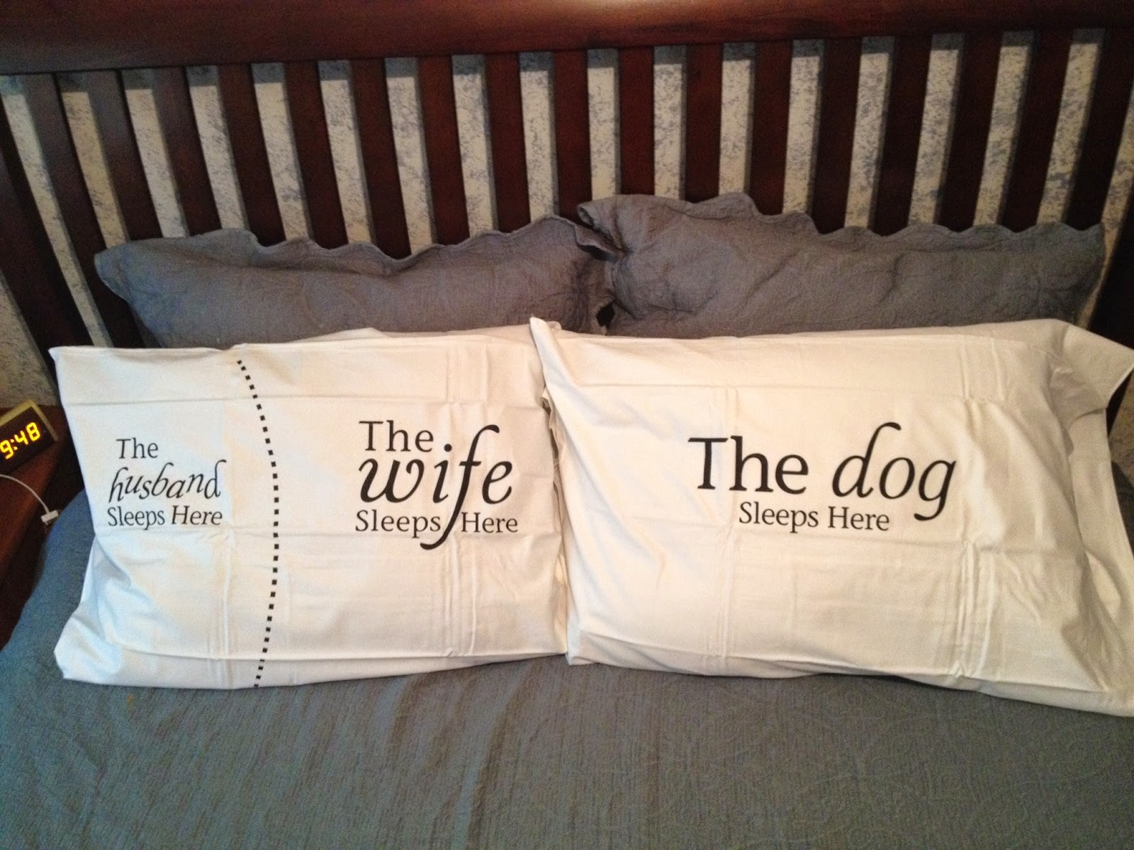 Dog hogging the bed - Are You Like Me Conflicted Because You Enjoy The Idea Of Having The Dog On The Bed But Not Enjoying The Aches And Pains That Result From Being Contorted