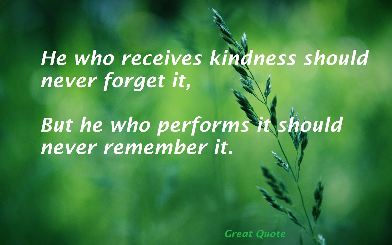 Quotes Kindness Kindness Quotes  Quotes About Strength