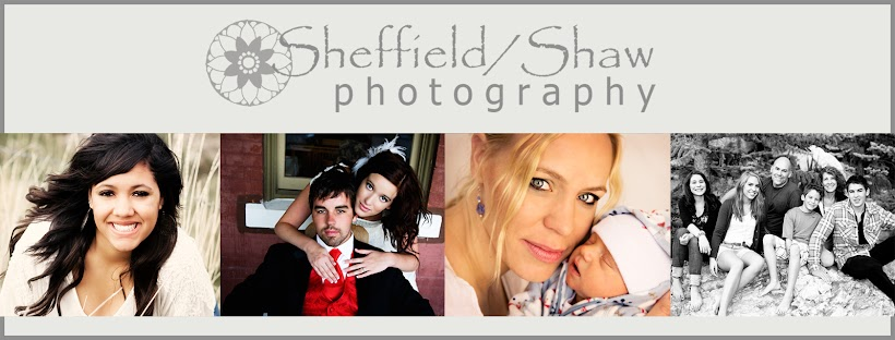 Sheffield/Shaw Photography