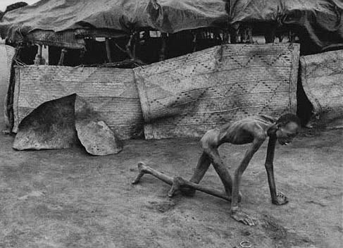 rwandan genocide 1994 survivor of hutu death camp by james