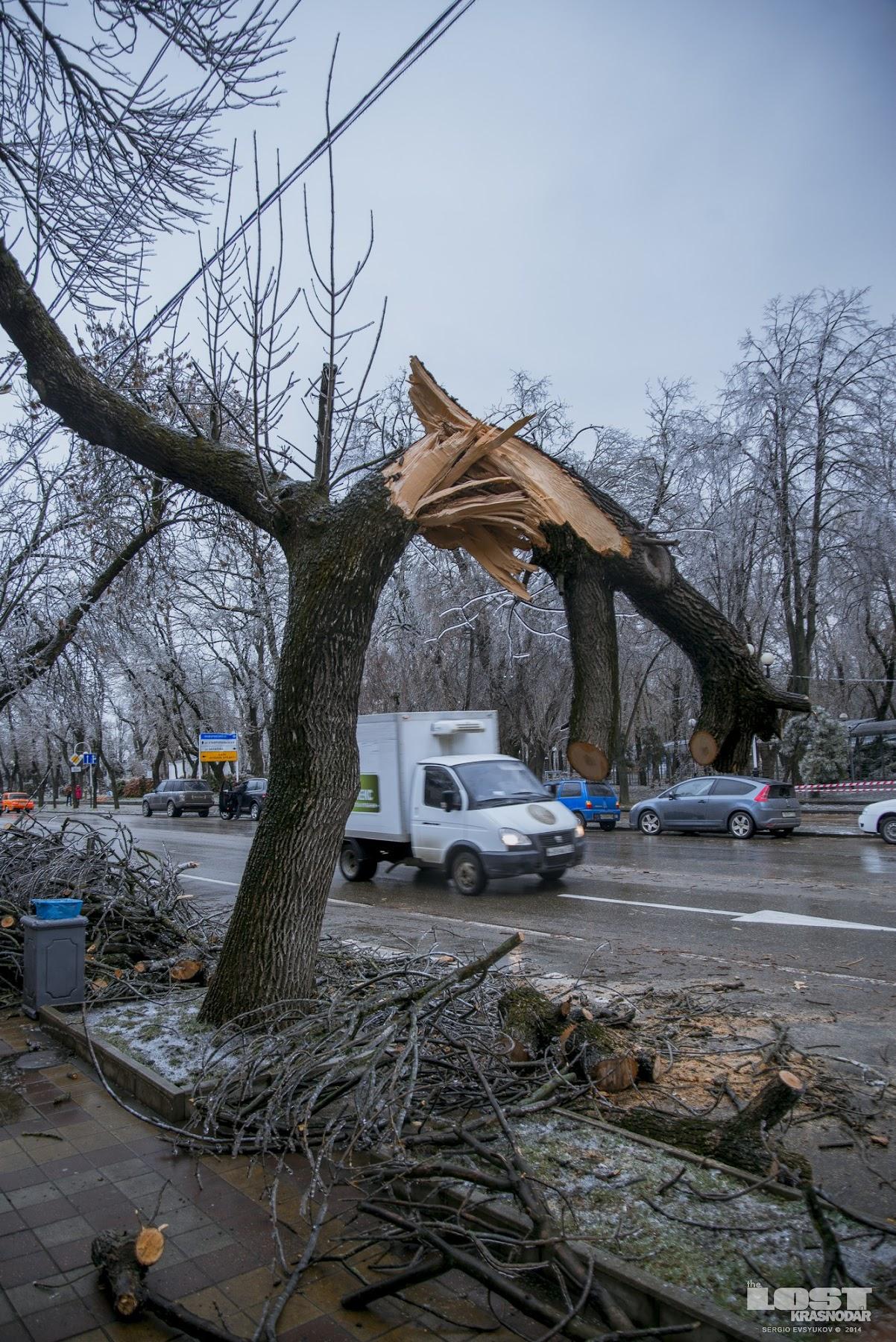 Ледяной шторм на Кубани