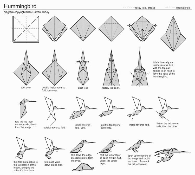 Origami Hummingbird Diagram Instructions