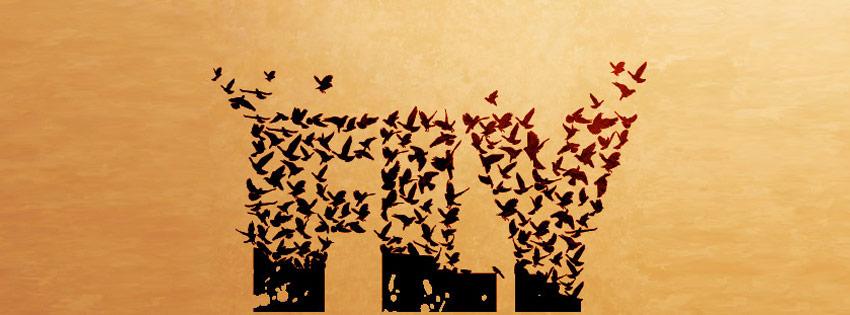 Birds Flok Made Up Fly