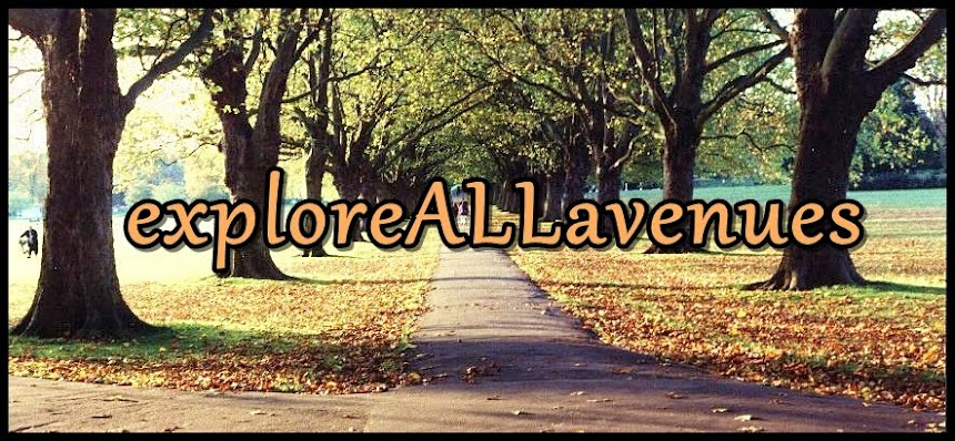 explore ALL avenues