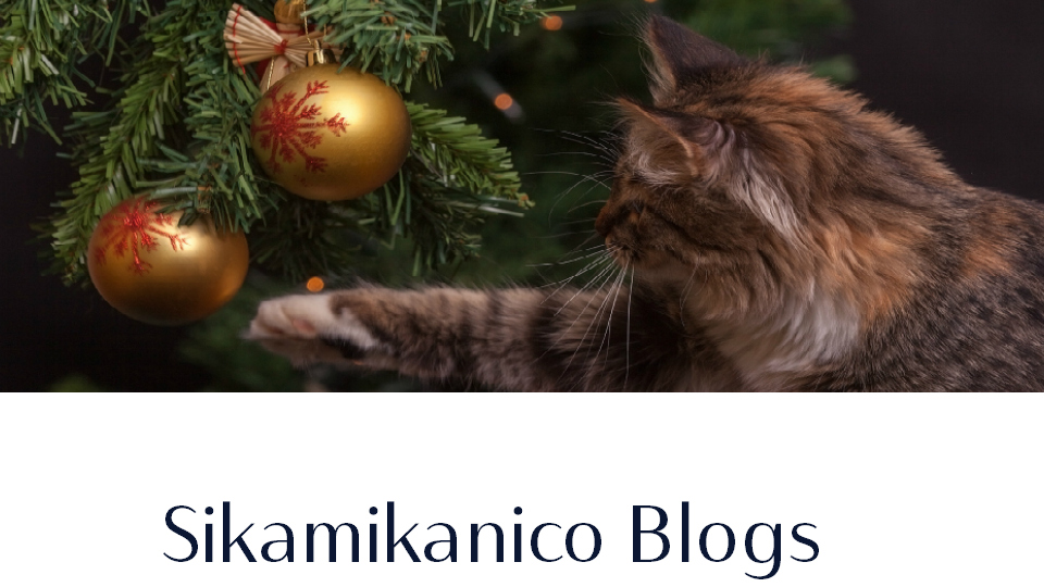 Sikamikanico Blogs
