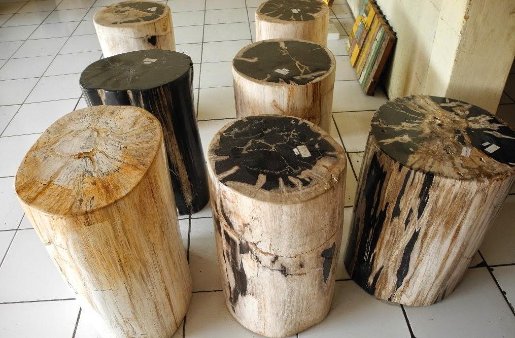 Rustic furniture indogemstone for Petrified wood furniture for sale