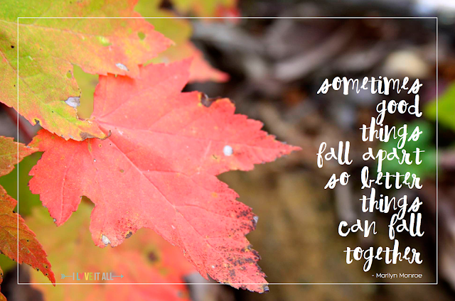 #sundayphotos #marilynmonroe #good things #together #fall #leaves #iloveitall