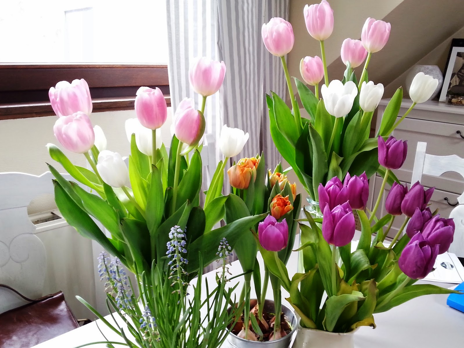giulesss, blog, tulips, flowers, fashion, home decor, pink, tulipani, shabby chic