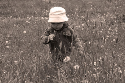 public domain image of preschooler
