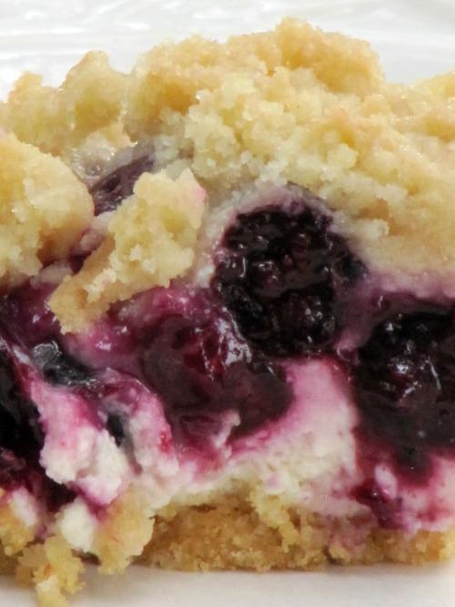 Pine Cones and Acorns: Blueberry Cheesecake Bars