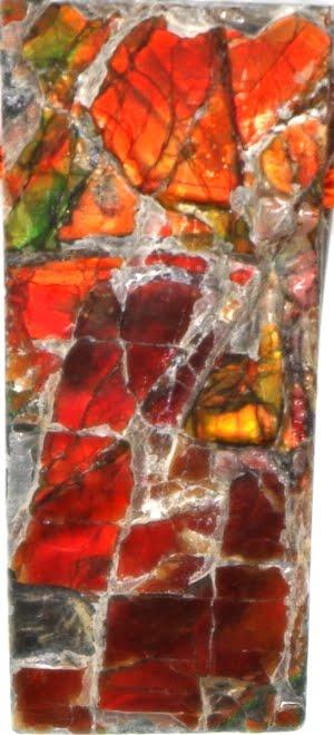 Ammolite, la pierre aux millions d'années