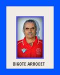 BIGOTE ARROCET