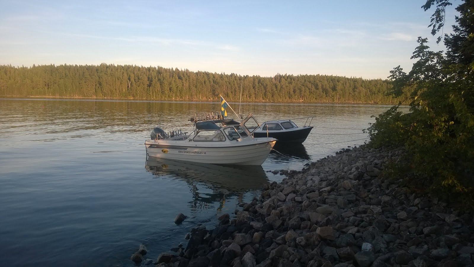 Kräftfiske 2015