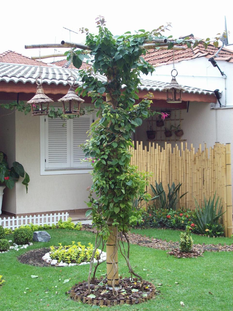 trelica bambu jardim : trelica bambu jardim:Artbambu e palha: Cerca de bambu indiano para jardins de inverno