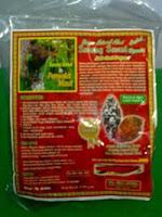 Sarang Semut(Sarmut)Asli Papua vs Penyakit Maut