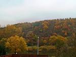 Main-Blick im Herbst