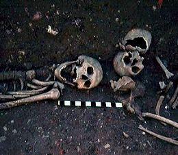 esqueleto de vampiro