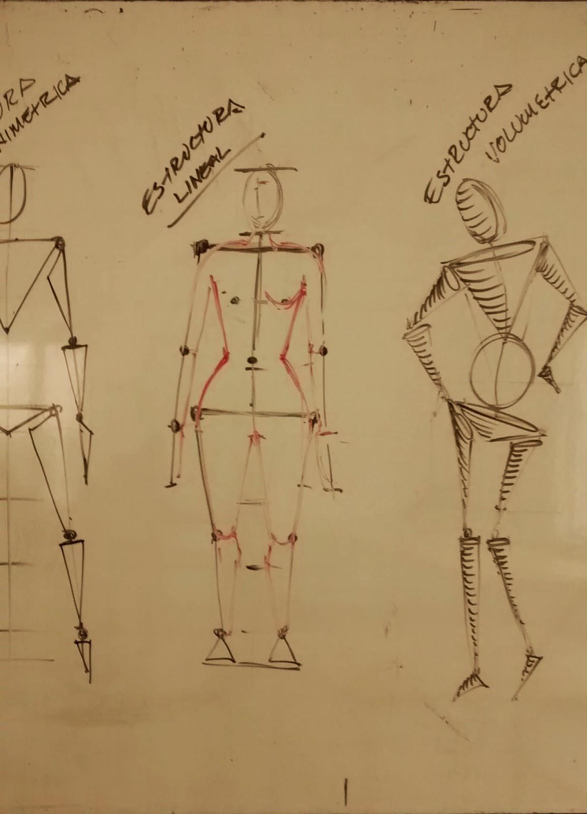 Dibujo del Cuerpo Humano