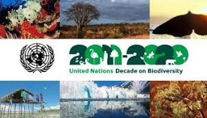 2011-2020: Década da Biodiversidade