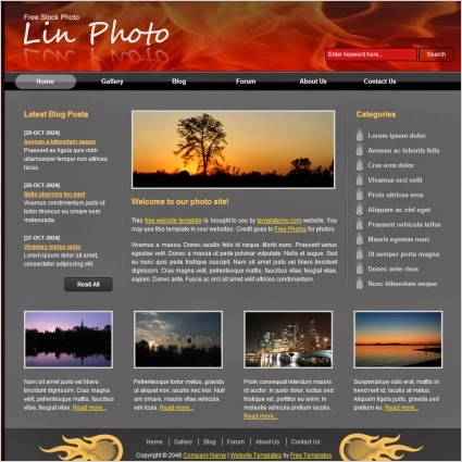 photo collection Template,html template,blogger template,gallary template,beutiful photos,gallary,lin photo