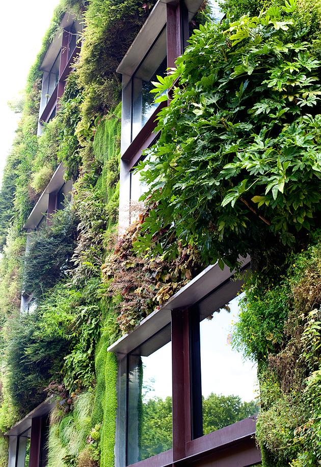 patrick blanc's vertical garden, paris