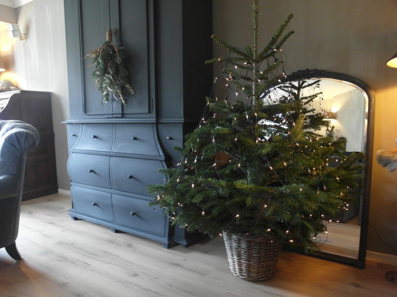 Keukenlamp Landelijk : Een kerstboompje bij AH vandaan met alleen wat lichtjes (ik hou niet