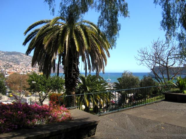 Santa Catarina park Funchal center Madeira