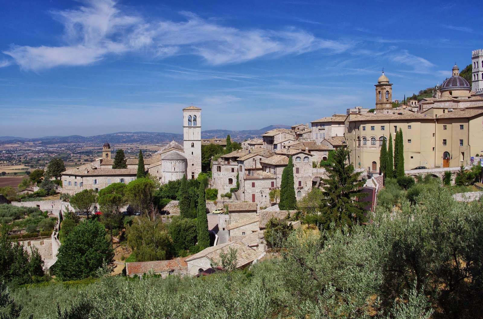 saint francis assisi essay View saint francis of assisi research papers on academiaedu for free.