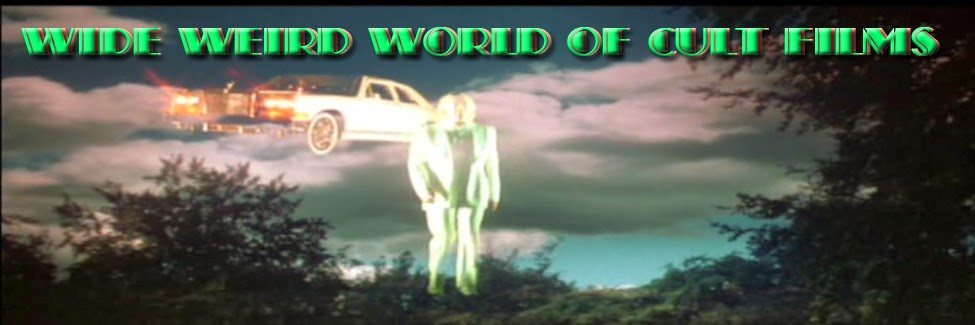 Wide Weird World Of Cult Films