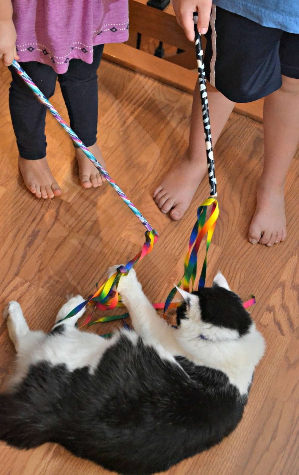 Fun Cat Toys : Diy cat charmer ribbon wand toy building our story