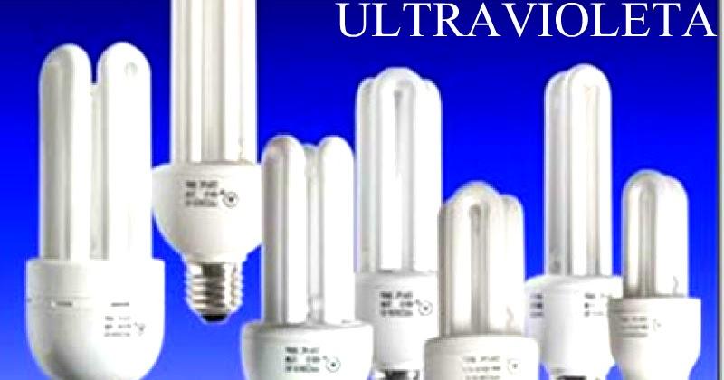 Los peligros de las bombillas de bajo consumo contienen Bombillas de bajo consumo