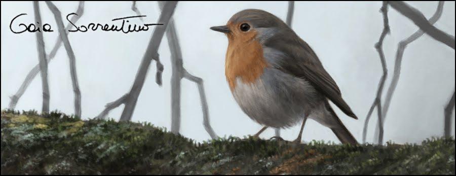 Gaia Sorrentino - Disegnatrice Naturalista