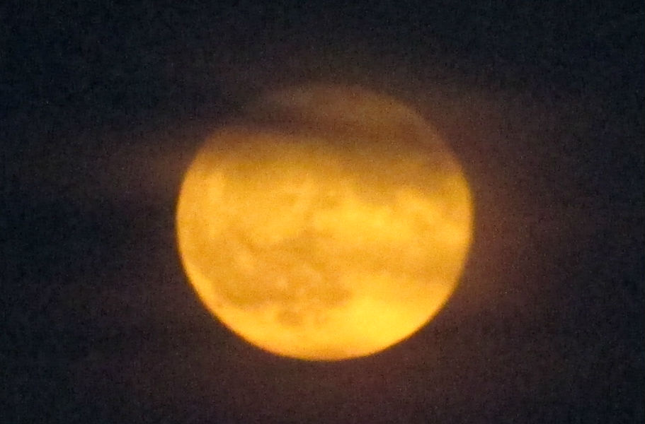 Tonight's Micromoon--we watched it rise over the Battery tonight, it was red and orange