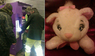 12-Hour Rescue Effort Saves Cat…a toy cat.