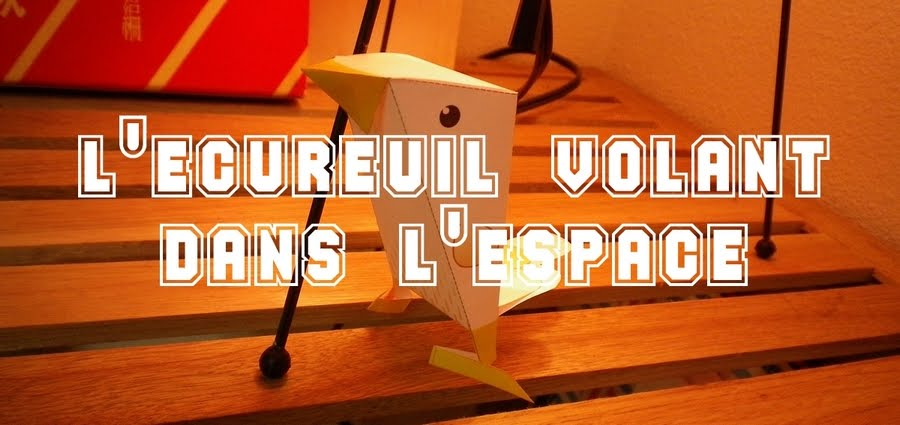 L&#39;cureuil volant dans l&#39;espace