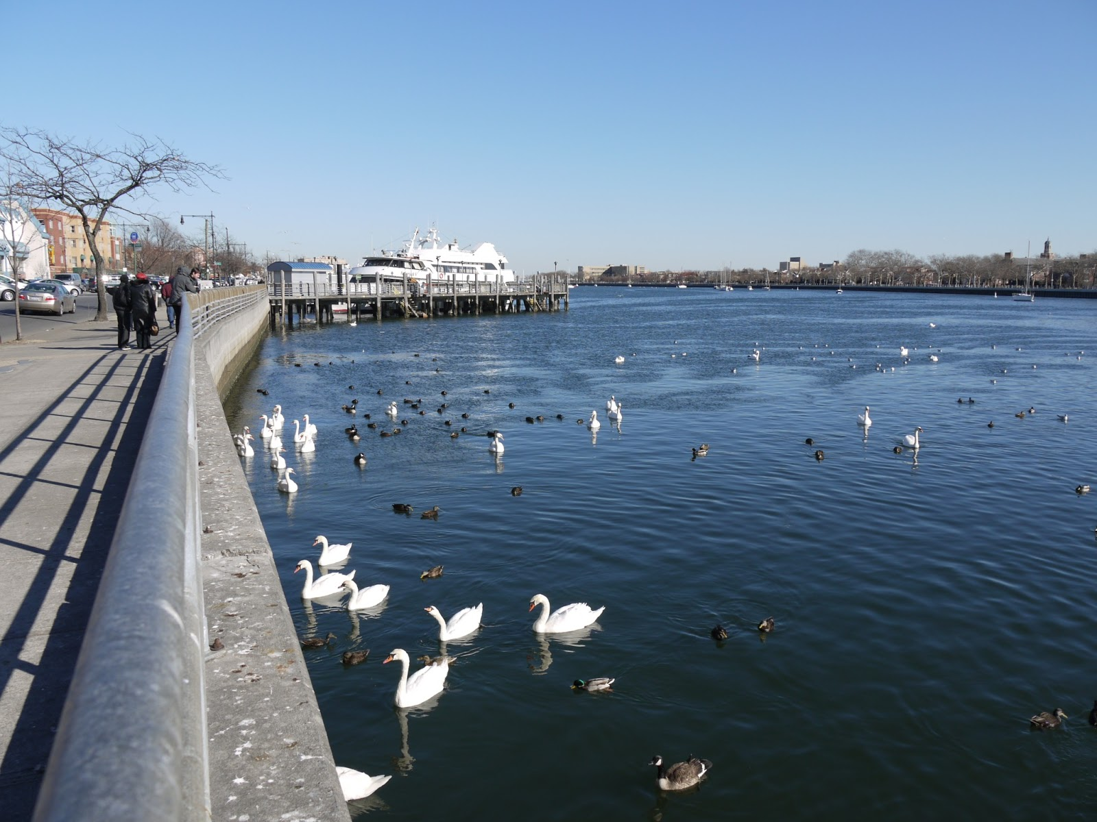 Frogma a grand ramble on president 39 s day for Sheepshead bay fishing boats