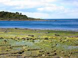 Puerto de hambre - Magallanes - Chile